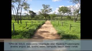 Fazenda à venda 910 Ha município Bonito - MS ( Creci 778 - J)