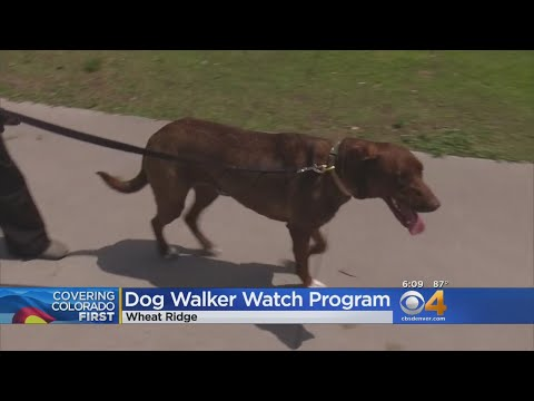 Police Want You & Your Dog To Help Stop Crime