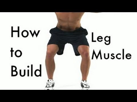 Leg Muscles Anatomy, Function & Diagram | Body Maps