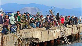 ВОТ ЭТО ТРОФЕЙНАЯ РЫБАЛКА Приколы на рыбалке Отличный клев Рыбалка весной 2021
