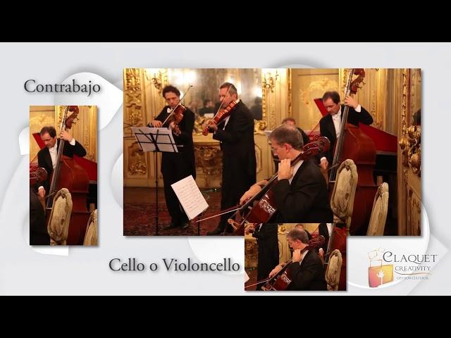 175J Concierto en re menor para Oboe y Orquesta   Alessandro Marcello