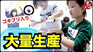 【大量スライム】こんなに沢山あると大惨事に...!?ホウ砂と洗濯のりで作ってみた!!How to make slime play SLIME!!!! thumbnail