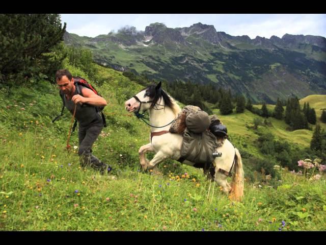 Alpenüberquerung! Mit einem Packtier über die Alpen.  Wanderreiten in den Alpen