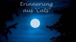 Angelika Milster-  Erinnerung aus Cats