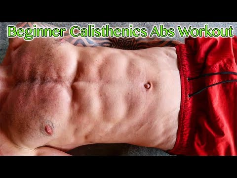 Beginner Calisthenics Abs Workout – NO EQUIPMENT NEEDED