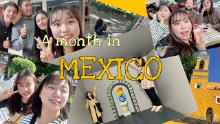 [??멕시코 한달살기#2] 멕시코시티 관광! | 멕시코…