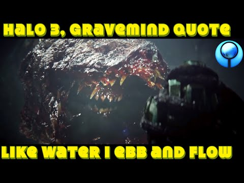 Halo Lore: A mysterious Gravemind quote no one can explain /Halo 3.