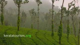 Image of Hill Stations of Kerala