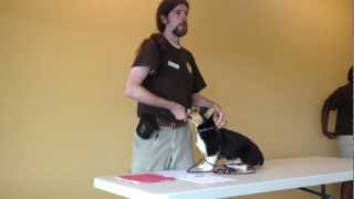 Olde Towne Pet Resort Dulles Dog Trainer Kenneth Pilcher Explains Importance Of Eye Contact