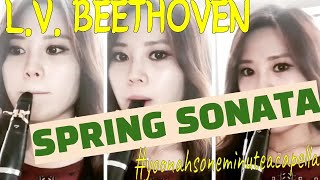 Beethoven Spring Sonata for Th…