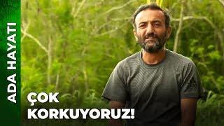 DOMİNİK'TE KORONA KORKUSU! | Survivor Ünlüler Gönüllüler