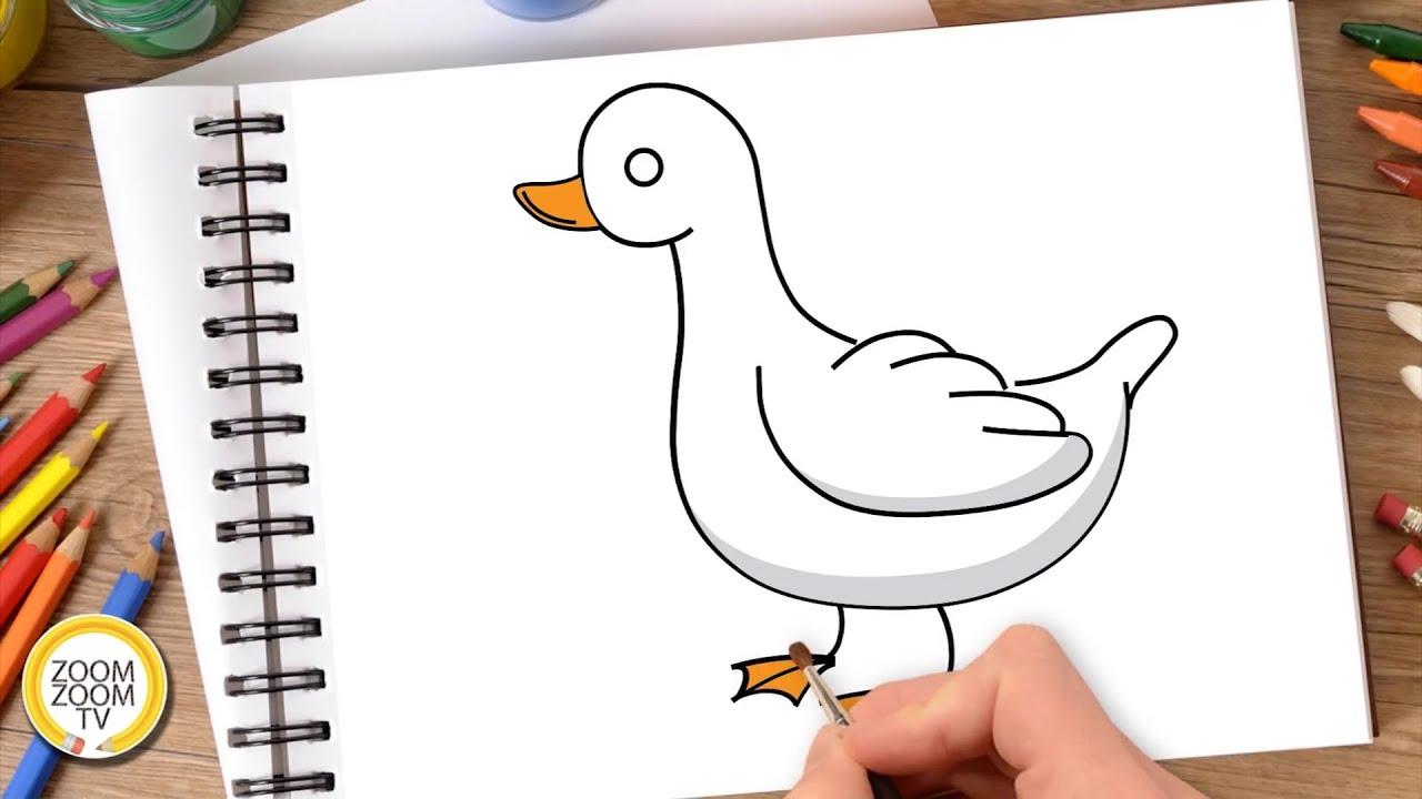 Hướng dẫn cách vẽ CON VỊT – Tô màu con Vịt – How to draw a Duck