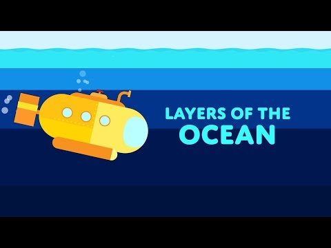 Layers Of The Ocean