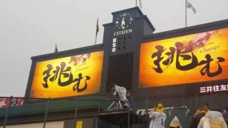 2017年は阪神の年にしてやー‼ 巨人はちょっとは手を抜いてやー‼‼