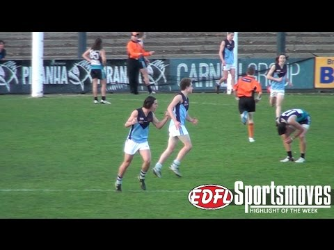 EDFL Web TV | Rounds 17-18, 2016 (Includes U16 Division 1 Grand Final Highlights)