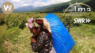 Bulgarien   Lebenskünstler im Land der Rosen - Länder Menschen Abenteuer (SWR)