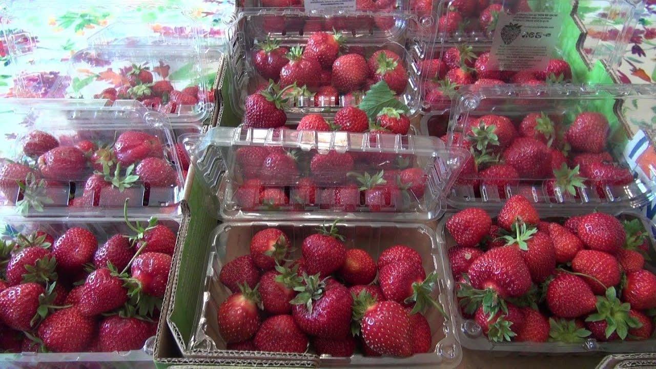 lovely strawberry storage Part - 1: lovely strawberry storage design