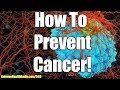 Ep #585 - How To Prevent Cancer & Live An Anti Cancer Lifestyle