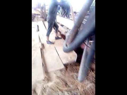 Sawmill work in Guyana