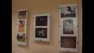 О моей выставке. ТВ5 Запорожье(, 2012-12-11T22:11:33.000Z)