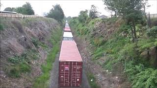 DL 9291 paasing under Omokoroa Road with Train 325 10.1.19