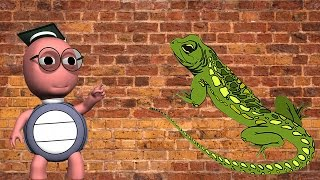 How Do Lizards Climb Walls - What Makes Lizards 'Stick' To The Wall When They Are Crawling- For Kids