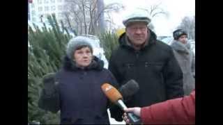 видео Живые новогодние ёлки