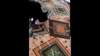 Старая,глухая кошка не слышит пылесоса
