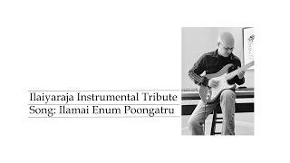 Ilamai Enum Poongatru - An Ilayaraja song covered with a Mark Knopfler-esqeue tone :)