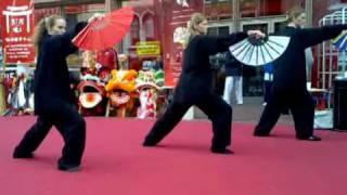tai chi fan 18 form yang style