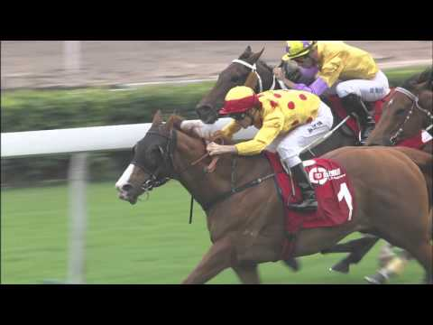 HKIR Trackside  – Richard Gibson Trainer of  GOLDFUN & DUNDONNELL