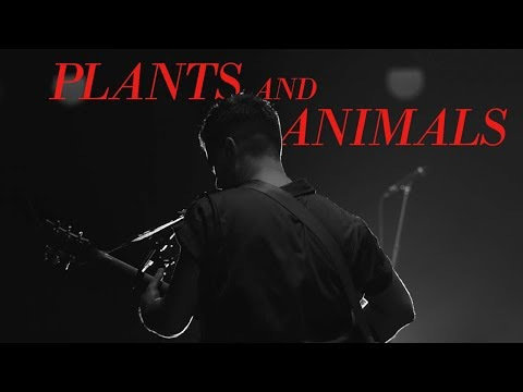 Plants and Animals | Live at Massey Hall - December 1, 2016