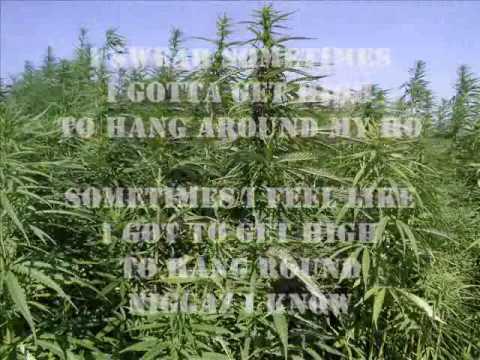 THP - bin laden weed by 3 6 Mafia.flv