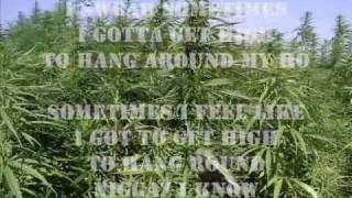 THP - bin laden weed by 3 6 Mafia.flv