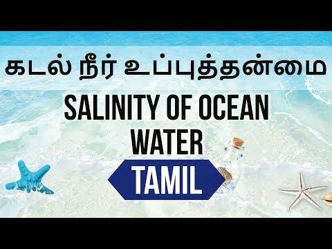Tamil - Geography Salinity of ocean water கடல் நீர் உப்புத்தன்மை Oceanography TNPSC UPSC IAS