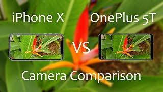 OnePlus 5T Vs iPhone X Camera Comparison