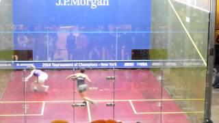 2014 Squash: Laura Massaro vs Rachael Grinham