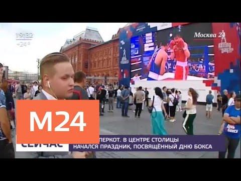 На Манежной площади отметили Международный день бокса - Москва 24