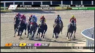 Vidéo de la course PMU PREMIO ANDROMEDA TIDE