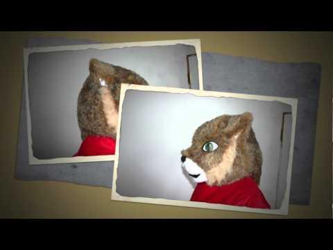 3775 Bath County High School Wildcat