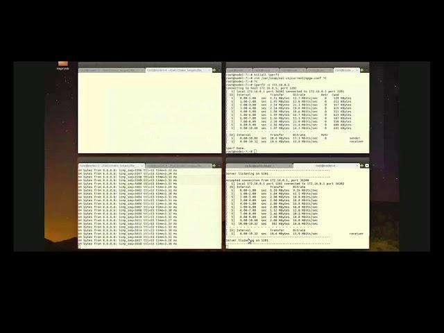 DALI - Dual Connectivity Solution for ORCA – OAI Tutorial
