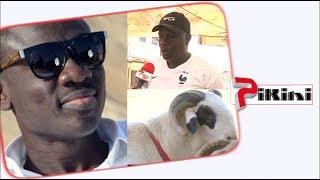 Lamine Samba : J'ai vendu à Pape Diouf un mouton à 3 millions