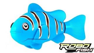 RoboFish - Обзор новой интересной игрушки