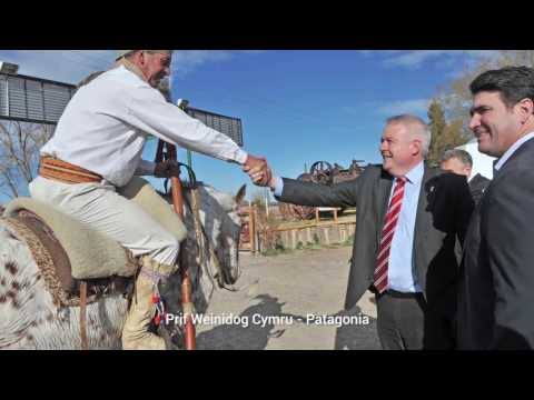 Patagonia highlights - Welsh original 528004461