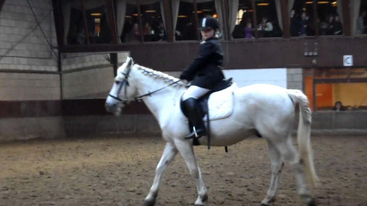 Melanie Proef F1 Paardrijden Youtube