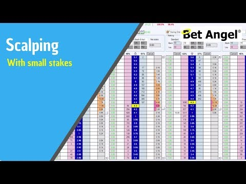 Using Bet Angel - Trading a race on the Ladder