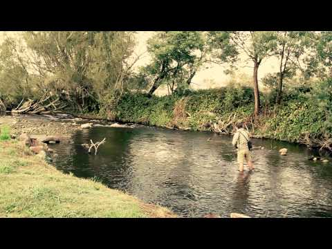 Fly Fishing Project - Trout In Rubicon And Goulburn Rivers, Thornton, Victoria, Australia