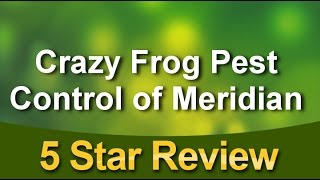 Crazy Frog Pest Control of Meridian Meridian Impressive 5 Star Review by katie s.