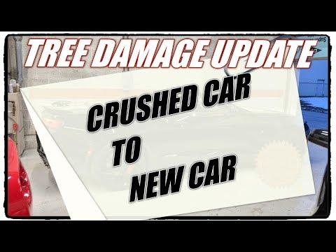 TREE DAMAGE UPDATE:  Customer's Replacement Car Reveal!