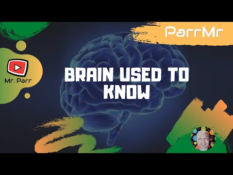 Brain Used To Know Song